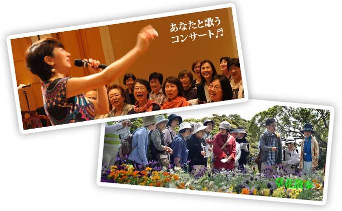 文化事業:旅行・イベント・講座