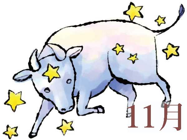 【11月★牡牛座おうし座】今月の運勢・無料占い