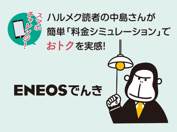 ハルメク読者の中島さんが簡単「料金シミュレーション」でおトクを実感!