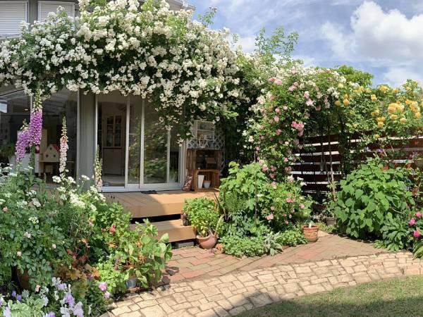 奥野多佳子さんのバラの庭
