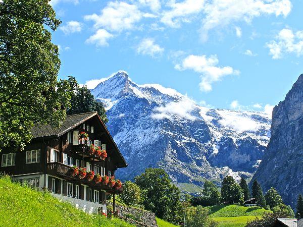 クイズ「ハイジの舞台はスイスですが~」ときたら?