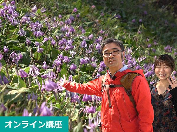 ハルメクイベント草花散歩