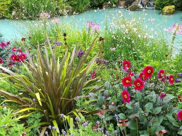 安曇野ラ・カスタのガーデン、真夏でも美しい驚きの庭