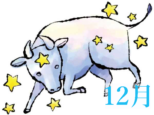 【12月★牡牛座おうし座】今月の運勢・無料占い