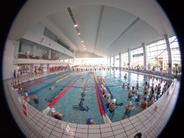 水泳教室に入会するオトナのさまざまな事情