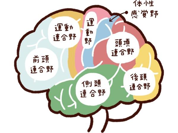 「大人の脳トレドリル」で記憶力・集中力アップ