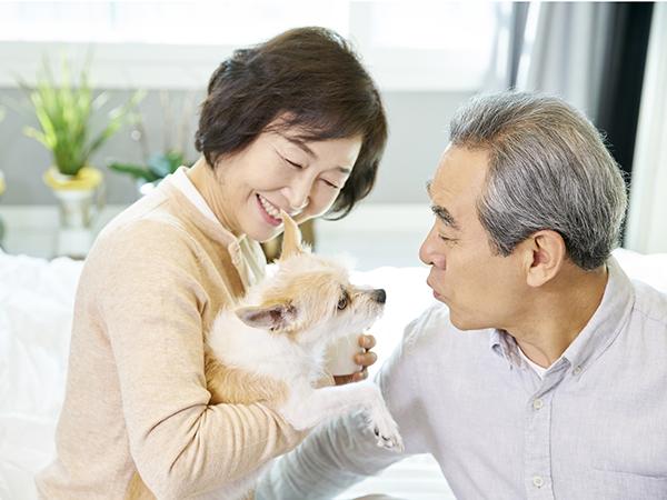 ペットを飼う高齢夫婦