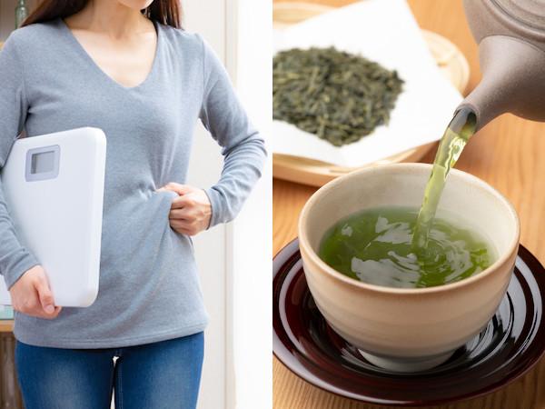 お茶の体脂肪を減らす効果を解説!ガレート型カテキンとは