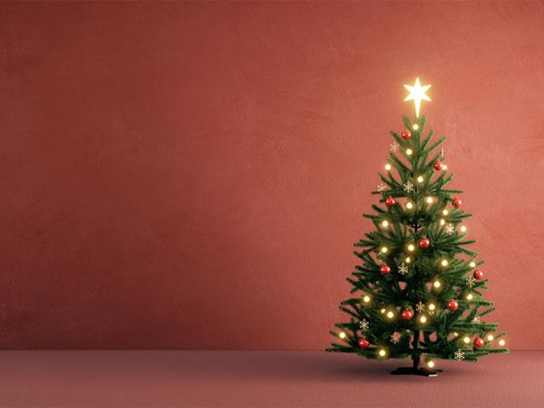 普通のクリスマス