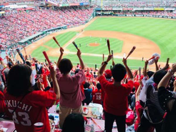 広島カープを応援する熱烈なファンの様子