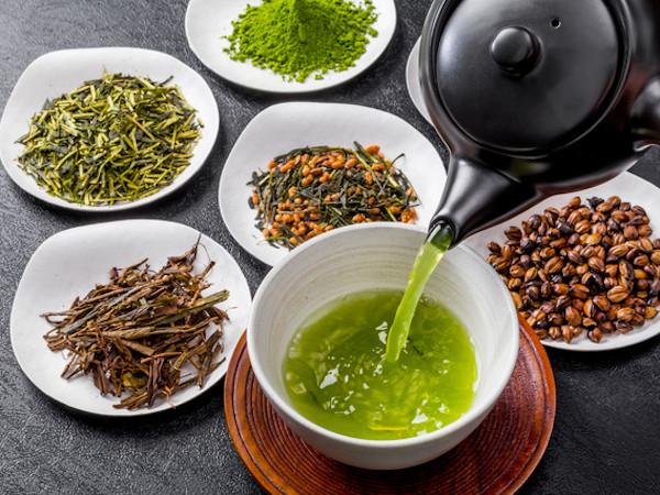 ほうじ茶も緑茶の仲間!?お茶の種類と特徴をチェック