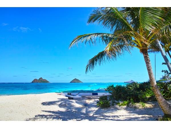 私の海外旅行デビューはハワイ