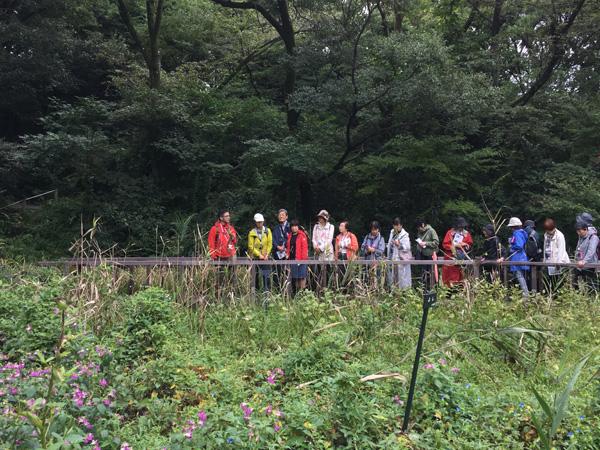 目黒駅周辺を散歩。色とりどりの秋の花三昧コース!