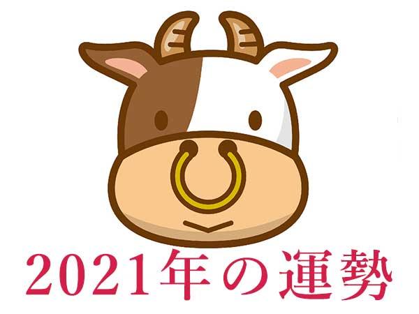 2021年★牡牛座・おうし座の占い・運勢・開運情報