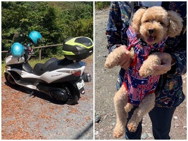 タンデム+ワン(犬)ドライブ