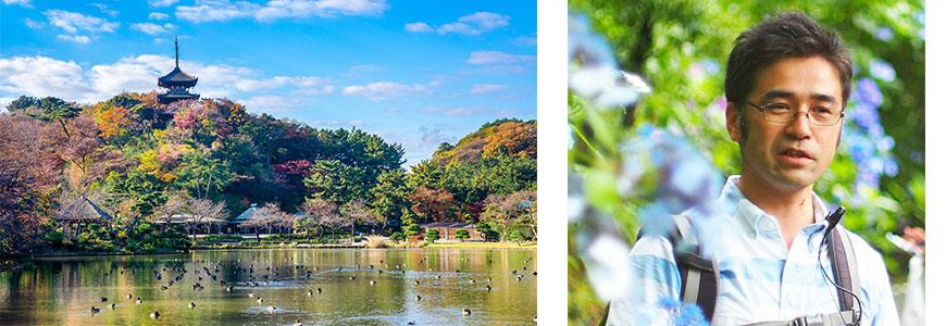 紅葉の横浜三溪園を講師と歩く