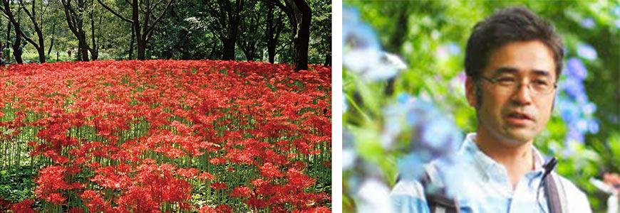 植物ハカセと歩く・草花散歩9月