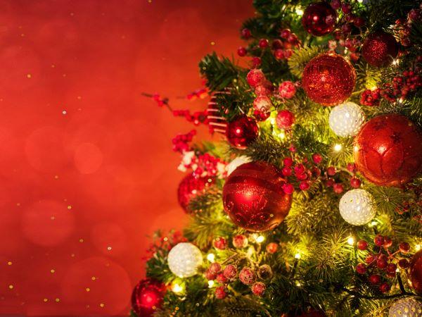 クリスマスを楽しむ!簡単アイデア集