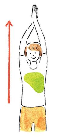 自律神経を整えるアイデア12:スゴ伸びストレッチをする