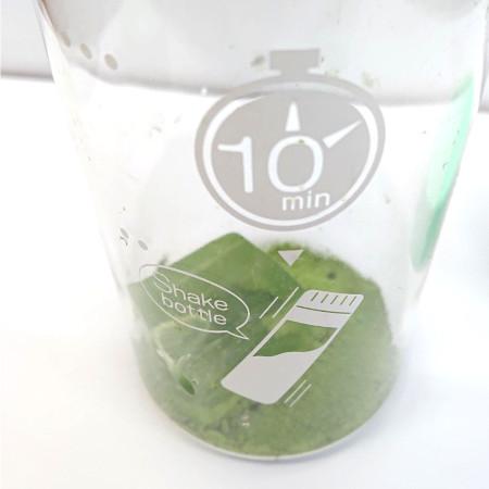 抹茶の作り方(シェイカー編)・手順1:抹茶と氷を入れる