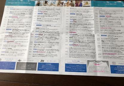 前夜にキャビンに届く新聞(プリンセスパター)に、印をつけて翌日の予定を決めますが 時間が重複することがあるので、友達と相談します。