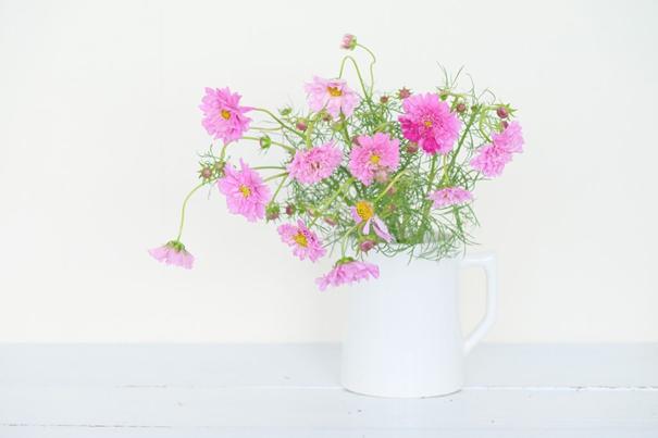 コスモスの花の飾り方1:曲がった茎を生かす