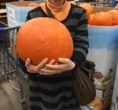 こんなに大きなかぼちゃ