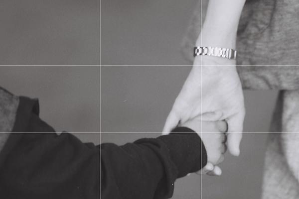カメラのグリット線(提供=カメラのキタムラ)