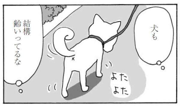上大岡トメさんの愛犬・マヤサンも足の筋肉が衰える年齢に