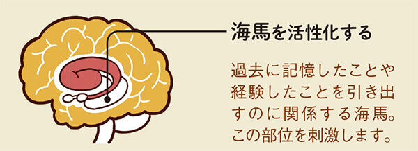 脳トレ問題で海馬を活性化