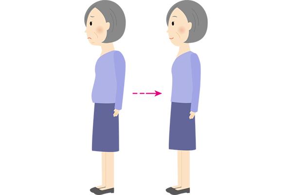 理想の姿勢とは?骨盤底筋の緩みから姿勢の崩れも起こる