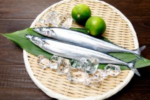 魚を食べると頭が良くなるって本当?