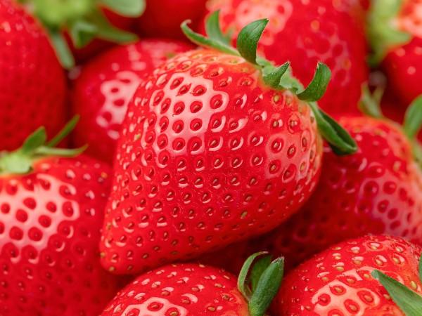 イチゴは野菜…!?野菜と果物の定義とは?