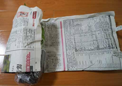 葉が隠れるサイズに新聞紙を畳み、観葉植物をくるりと筒状に包む
