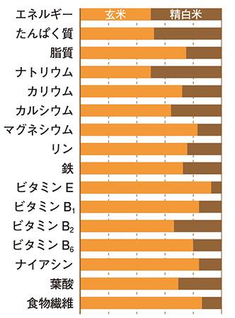 玄米の外皮には食物繊維が豊富。精白米が精米によって失うビタミンなども保持(五訂増補 日本食品標準成分表を基に編集部で作成)