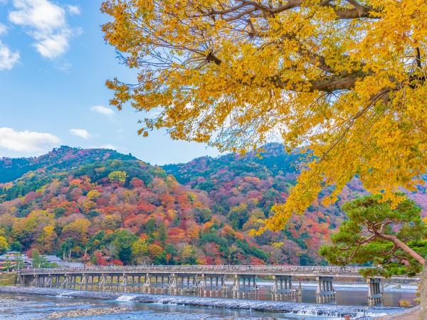京都府「嵐山(あらしやま)」