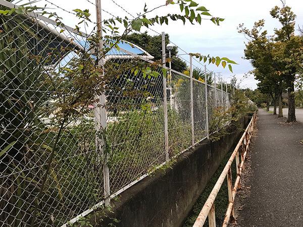 今年の市民プールは閉館されたままで夏が終わってしまいました