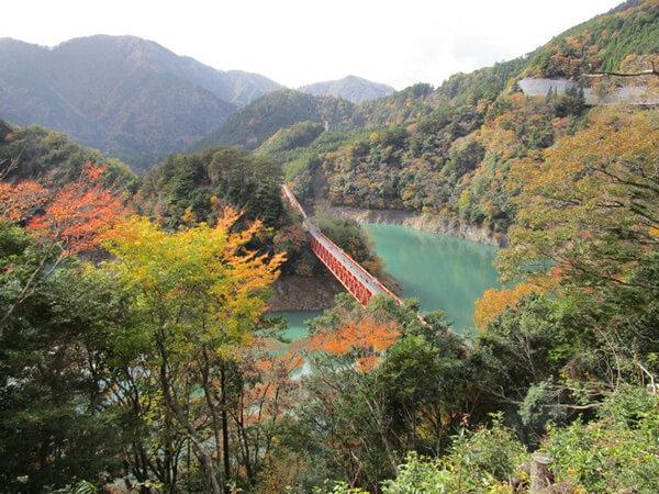 奥大井湖上駅は夢の世界