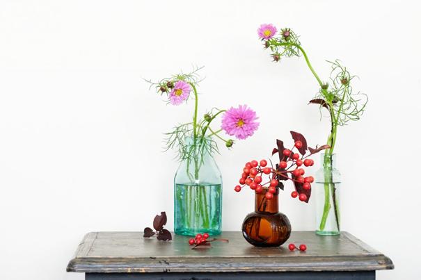コスモスの花の飾り方3: お気に入りのガラス瓶で一輪を楽しむ