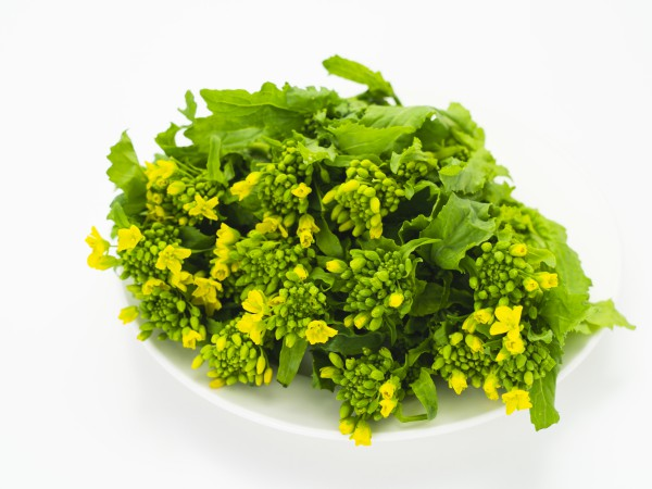 青菜・菜の花・アブラナの違いって?