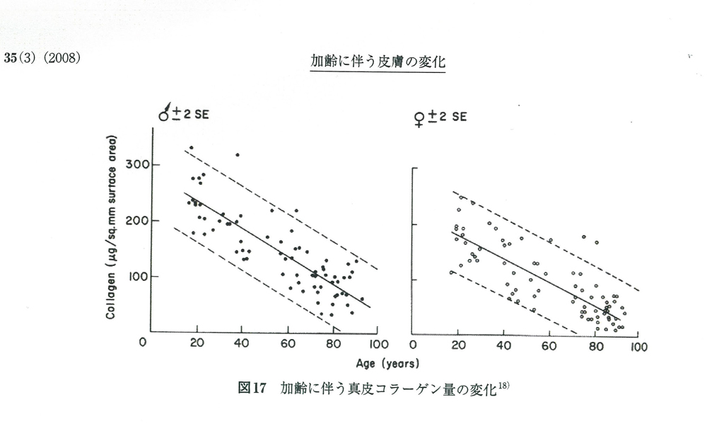 加齢に伴う皮膚とコラーゲンの変化