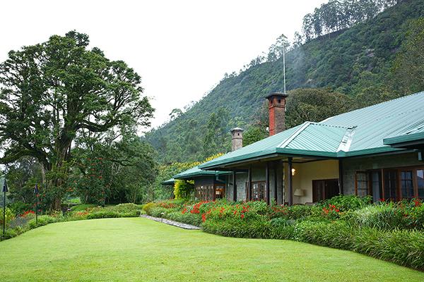 茶畑の中に作られた元農園主の邸宅が今はホテルに