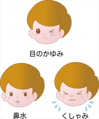 花粉症の三大症状:くしゃみ・鼻水・目のかゆみ