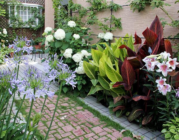 初夏の庭の、白い花たち