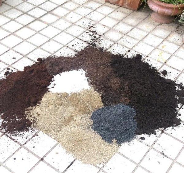 バーグ堆肥:ピートモス:土(真砂土)=3:2:5 の割合で混ぜています