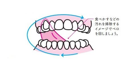殺菌ベロ回しのやり方:ベロで歯ぐきの裏側をなぞる