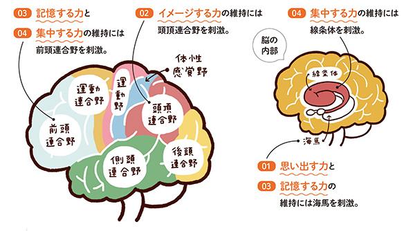 脳トレが認知症予防につながる