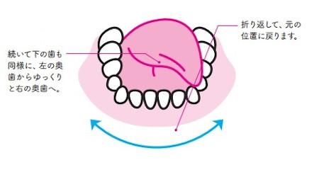 簡単ベロ回し:下の歯も同様に、左から右へ