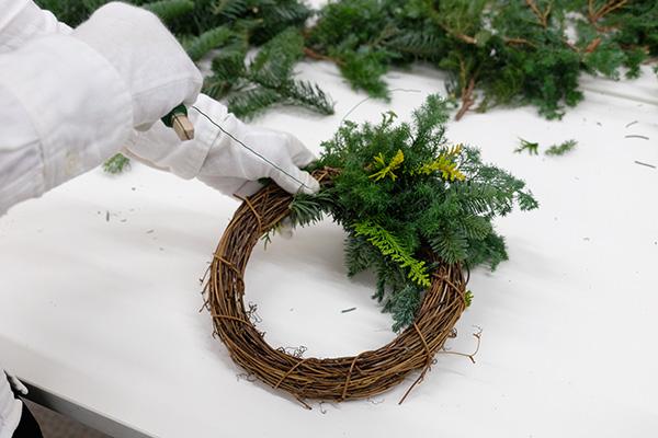 植物が「時計回り」に向くように巻き付けていく