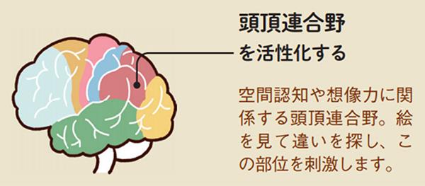 脳トレ問題で頭頂連合野を活性化